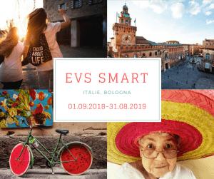 EVS smart _promo pic